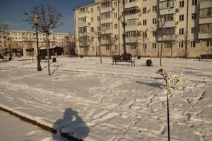 http://forum.toadstool.ru/uploads/monthly_2017_02/DSC08055.thumb.jpg.09afb72678087c6f7858bc28ec6e5f64.jpg