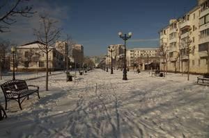 http://forum.toadstool.ru/uploads/monthly_2017_02/DSC08057.thumb.jpg.f946932ce81a90f41c52142a0a747536.jpg