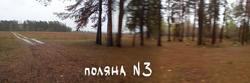 Поляна № 3.jpg