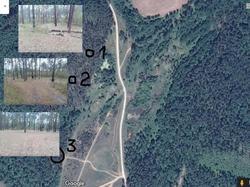 Карта слета.jpg