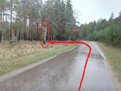 Поворот на 1 поляну если ехать от Металлурга-12.jpg
