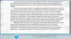 0_1099d5_53b60c20_orig.png