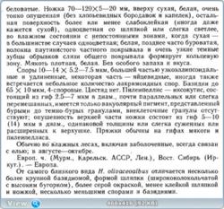 0_f9232_2e9b780_orig.png