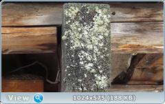 thumb.1583673102.png