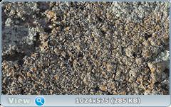 thumb.1585365161.png