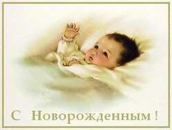 novor_m_17.jpg