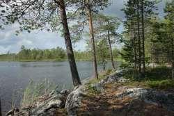 599b3bacbd914_Karelia2017059.thumb.jpg.6e55b3fcd7830c0cb78bf28e4dd57c51.jpg