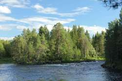 599c463803af2_Karelia2017954.thumb.jpg.1576d56652ce6fd4df8822467efe6b20.jpg