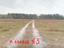 К поляне № 3.jpg