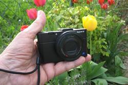 Sony_RX2_AWP_20140410.thumb.jpg.edeecd33689e64fff7ab7dc048e8eded.jpg