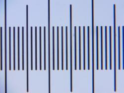 mikromed_40x_14-04-2020.thumb.jpg.bff03a5dbe26e4b00997c1b5e3be2526.jpg