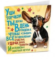 740607987_birthdaydog.thumb.jpg.7e1b85466930967934e3b5879065e826.jpg