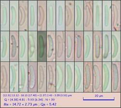 sp103_pixi.thumb.jpeg.9767334d2ec85290471981fe4304576a.jpeg