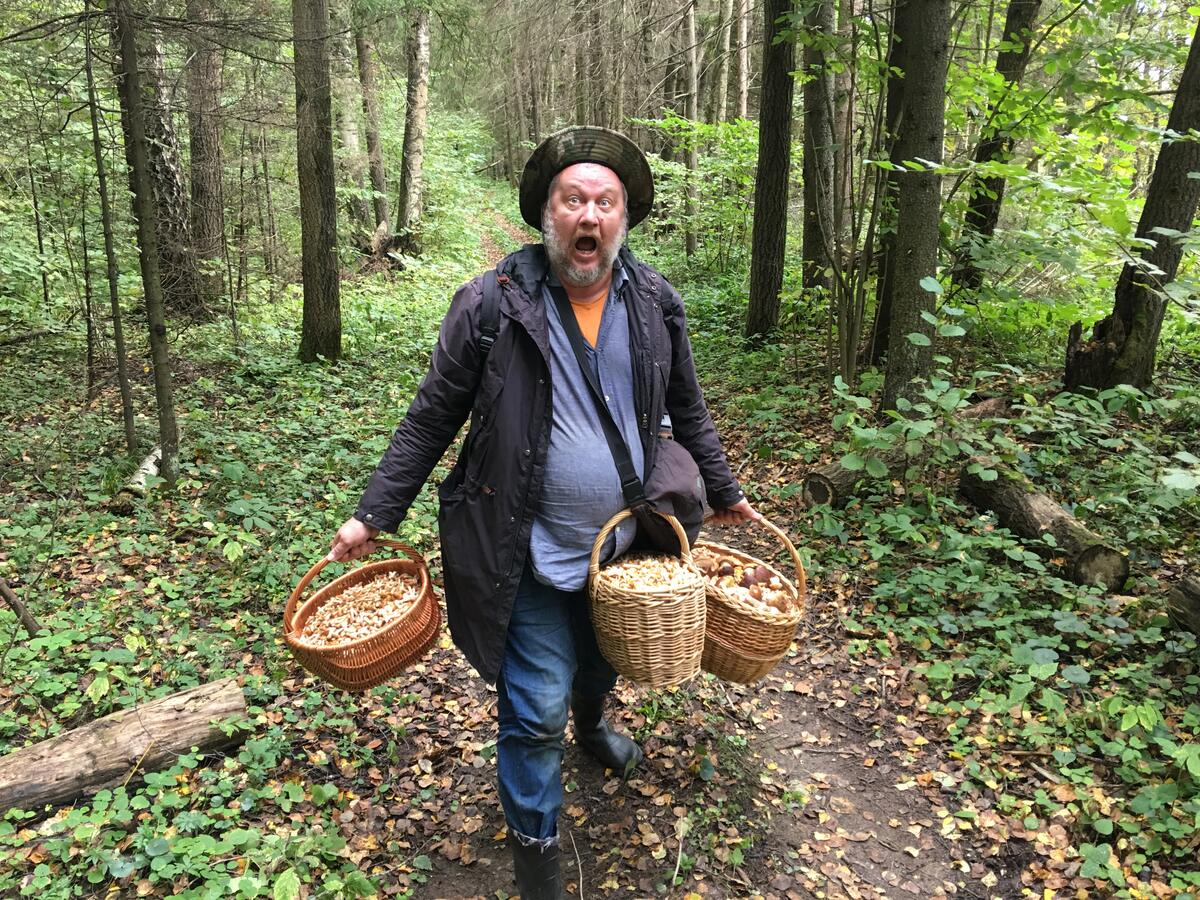 грибы говорят форум подмосковья 2021 год запад