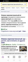 Screenshot_20211004_081917_com.yandex.browser.thumb.jpg.5f868fea1f740a951ec612f9d333c9ed.jpg
